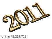 Купить «Число 2011», фото № 2229728, снято 19 декабря 2010 г. (c) Игорь Веснинов / Фотобанк Лори