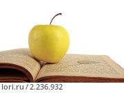 Жёлтое яблоко на открытой старой книге. Стоковое фото, фотограф Погорелов Владимир / Фотобанк Лори