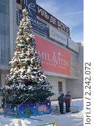 Купить «Новогодняя елка в Митино», эксклюзивное фото № 2242072, снято 2 января 2010 г. (c) Валерия Попова / Фотобанк Лори