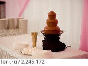 Шоколадный фонтан. Стоковое фото, фотограф Роман Богдановский / Фотобанк Лори
