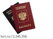 Паспорта на белом фоне. Стоковое фото, фотограф Алена Романова / Фотобанк Лори