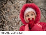 Купить «Девочка зимой», фото № 2245624, снято 26 декабря 2010 г. (c) Лена Лазарева / Фотобанк Лори