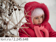 Портрет девочки на фоне обледенелых веток. Стоковое фото, фотограф Лена Лазарева / Фотобанк Лори