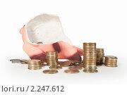 Купить «Разбитая  копилка  и  рассыпанные  монеты», фото № 2247612, снято 27 декабря 2010 г. (c) Юлия  Лесина / Фотобанк Лори