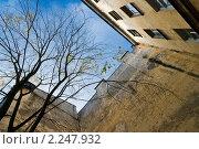 Купить «Санкт-Петербург. Дворы Петербурга», эксклюзивное фото № 2247932, снято 21 октября 2009 г. (c) Ольга Визави / Фотобанк Лори