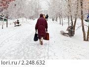 Купить «После ледяного дождя. Городской пейзаж», фото № 2248632, снято 26 декабря 2010 г. (c) Parmenov Pavel / Фотобанк Лори
