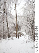 Купить «Обледеневшие деревья  около заснеженного пешеходного моста», фото № 2248644, снято 26 декабря 2010 г. (c) Parmenov Pavel / Фотобанк Лори