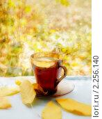 Купить «Осенний чай», фото № 2256140, снято 24 сентября 2010 г. (c) Усова Светлана  Юрьевна / Фотобанк Лори