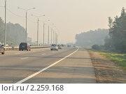 Купить «Смог на трассе Москва-Тула», фото № 2259168, снято 26 июля 2010 г. (c) Малышев Андрей / Фотобанк Лори