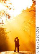Купить «Влюбленная пара», фото № 2261532, снято 3 ноября 2008 г. (c) Алена Роот / Фотобанк Лори