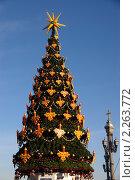 Купить «Рождественская елка возле храма Христа Спасителя в Москве», фото № 2263772, снято 7 января 2011 г. (c) Илюхина Наталья / Фотобанк Лори