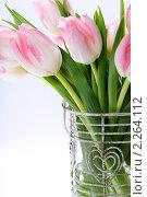 Купить «Букет розовых тюльпанов», фото № 2264112, снято 22 января 2010 г. (c) Наталия Кленова / Фотобанк Лори