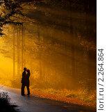 Купить «Влюбленная пара», фото № 2264864, снято 3 ноября 2008 г. (c) Алена Роот / Фотобанк Лори