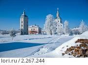 Купить «Свенский монастырь в Брянске», фото № 2267244, снято 4 января 2011 г. (c) Galina Semenova / Фотобанк Лори