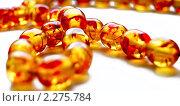 Купить «Янтарное ожерелье на белом фоне», фото № 2275784, снято 29 сентября 2009 г. (c) Роман Ушаков / Фотобанк Лори