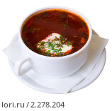 Купить «Борщ», фото № 2278204, снято 29 октября 2008 г. (c) паша семенов / Фотобанк Лори