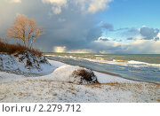 Купить «Балтийский берег. Зима», фото № 2279712, снято 18 октября 2019 г. (c) Сергей Куров / Фотобанк Лори