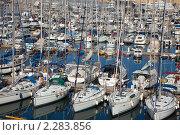 """Купить «Яхты, стоящие в бухте """"Dockyard Creek"""", Мальта», фото № 2283856, снято 20 декабря 2010 г. (c) Яков Филимонов / Фотобанк Лори"""