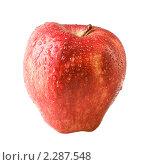 Спелое красное яблоко с каплями воды. Стоковое фото, фотограф Погорелов Владимир / Фотобанк Лори