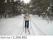 Купить «Лыжные прогулки по заснеженному лесу», фото № 2294492, снято 23 января 2011 г. (c) Светлана Кузнецова / Фотобанк Лори