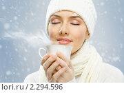 Купить «Девушка с чашкой горячего чая на зимнем фоне», фото № 2294596, снято 13 декабря 2010 г. (c) Константин Юганов / Фотобанк Лори