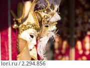 Венецианская маска. Стоковое фото, фотограф Роман Богдановский / Фотобанк Лори