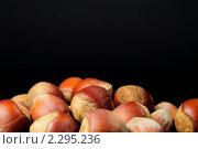 Купить «Лесные орехи на чёрном фоне», фото № 2295236, снято 23 января 2011 г. (c) Юлия  Лесина / Фотобанк Лори