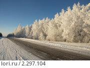Зимняя дорога. Стоковое фото, фотограф Семин Илья / Фотобанк Лори