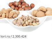 Четыре вида популярных орехов лежат раздельно в белой тарелке на белом фоне. Стоковое фото, фотограф Андрей Алпатов / Фотобанк Лори
