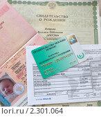 Купить «Свидетельство о рождении, заграничный паспорт, страховка», эксклюзивное фото № 2301064, снято 26 января 2011 г. (c) Liseykina / Фотобанк Лори