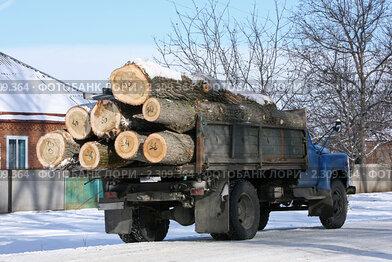 Купить «Деловая древесина», эксклюзивное фото № 2309364, снято 20 января 2011 г. (c) Игорь Веснинов / Фотобанк Лори