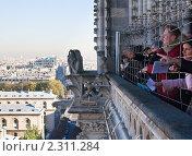 Купить «Туристы на смотровой площадке  собора  Нотр дам де Пари (Notre dame de Paris). Париж. Франция.», фото № 2311284, снято 21 октября 2010 г. (c) Николай Коржов / Фотобанк Лори