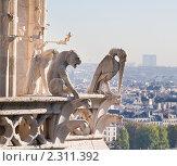 Купить «Вид на Париж с собора  Нотр дам де Пари (Notre dame de Paris). Франция.», фото № 2311392, снято 21 октября 2010 г. (c) Николай Коржов / Фотобанк Лори