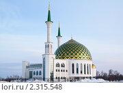 Купить «Мечеть в Кемерово», фото № 2315548, снято 31 января 2011 г. (c) Николай Патрин / Фотобанк Лори