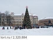 Новогодняя елка на главной площади Вильнюса. Литва. (2011 год). Редакционное фото, фотограф Анна Сапрыкина / Фотобанк Лори