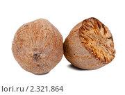 Купить «Мускатный орех», фото № 2321864, снято 28 ноября 2010 г. (c) Яков Филимонов / Фотобанк Лори