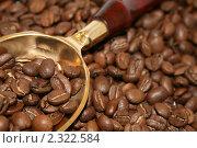 Хорошо приготовленные зерна кофе и совок. Стоковое фото, фотограф Сергей Афонин / Фотобанк Лори