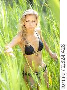 Купить «Молодая красивая девушка в зарослях на природе», фото № 2324428, снято 23 июня 2009 г. (c) Евгения Нечаева / Фотобанк Лори