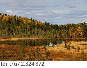 Купить «Лесное озеро. Карелия», фото № 2324872, снято 23 сентября 2010 г. (c) Ильин Сергей / Фотобанк Лори