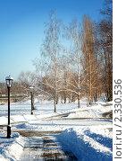 Городской парк зимой. Стоковое фото, фотограф Roman Firsov / Фотобанк Лори