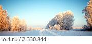 Заснеженные деревья и сельская дорога зимой. Стоковое фото, фотограф Roman Firsov / Фотобанк Лори