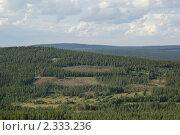 Купить «Бесконечные леса», фото № 2333236, снято 31 июля 2009 г. (c) Валерия Попова / Фотобанк Лори