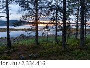 Купить «Белая ночь над заливом Белого моря», фото № 2334416, снято 4 июля 2010 г. (c) Михаил Иванов / Фотобанк Лори