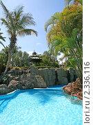 Купить «Роскошный отель на Канарских островах», фото № 2336116, снято 19 июня 2010 г. (c) Васильева Татьяна / Фотобанк Лори