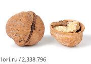 Купить «Грецкий орех», фото № 2338796, снято 6 февраля 2011 г. (c) Игорь Долгов / Фотобанк Лори