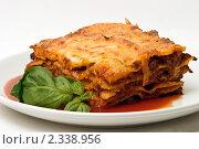Купить «Итальянская лазанья с томатным соусом и базиликом», фото № 2338956, снято 1 февраля 2011 г. (c) Никита Жигелев / Фотобанк Лори