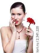 Купить «Девушка с цветком герберы», фото № 2341220, снято 17 декабря 2010 г. (c) Serg Zastavkin / Фотобанк Лори