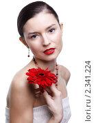 Купить «Девушка с цветком герберы», фото № 2341224, снято 17 декабря 2010 г. (c) Serg Zastavkin / Фотобанк Лори