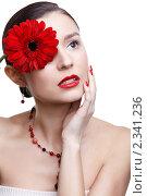 Купить «Девушка с цветком герберы в волосах», фото № 2341236, снято 17 декабря 2010 г. (c) Serg Zastavkin / Фотобанк Лори