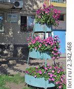 Купить «Трех этажная клумба», фото № 2342468, снято 19 сентября 2010 г. (c) Геннадий Соловьев / Фотобанк Лори